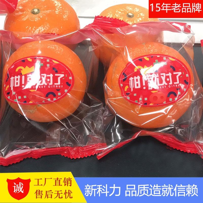 广西武鸣沃柑-茂谷柑自动包装机 水果打包机